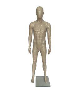 Bio. Herre mannequin ( C ) - klar lak